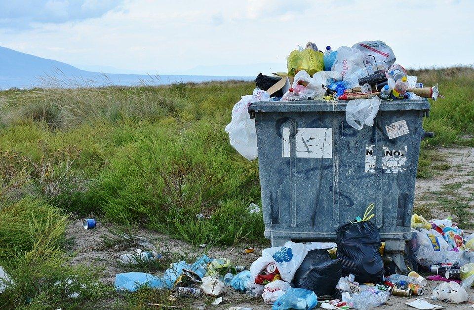 Embalagens Biodegradáveis para Alimentos