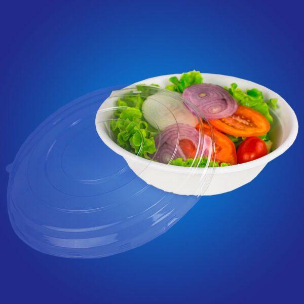 bowl biodegradavel